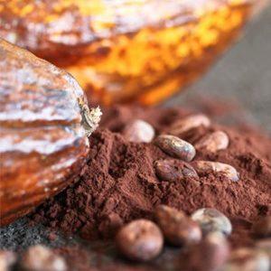 Cacao en polvo y derivados